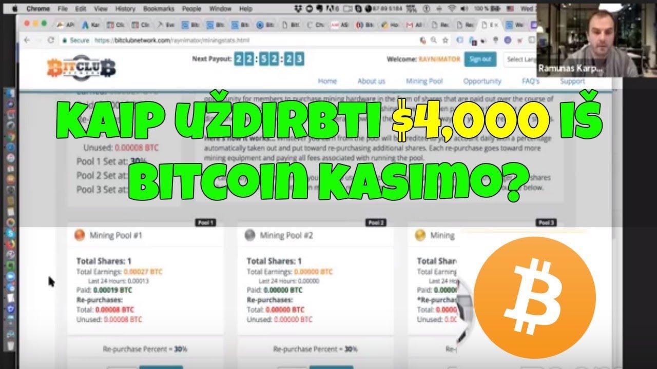 viskas, ką reikia žinoti apie Bitcoin beždžiones