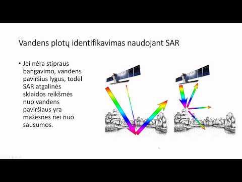 bangavimo diagrama kaip užsidirbti vaizdo mokymų